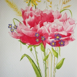 fleurs-ete
